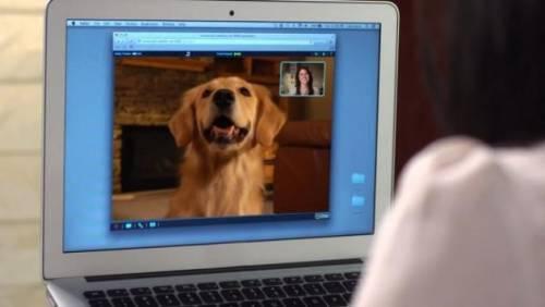 Επικοινωνήστε όπου και αν είστε με τον… σκύλο σας!